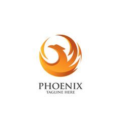 Best phoenix logo vector