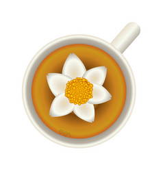 flower soup food vector image vector image