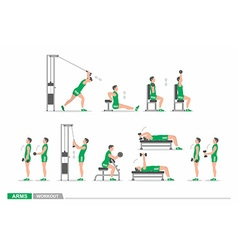 Set of workout for arms vector