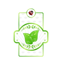 Natural eco label green leaves for packed product vector image