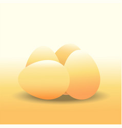 Eggs chicken egg vector