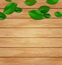 Wooden background with green leaves vector