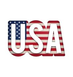 American United States Flag in glossy form button vector image vector image