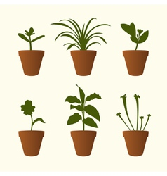 Plants in flowerpots vector