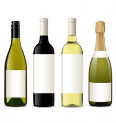 Vector wine bottles vector