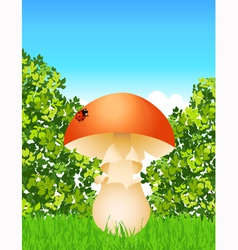 Mushroom in the forest vector