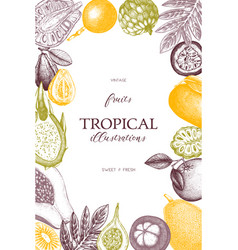 Frame with tropical fruits vector