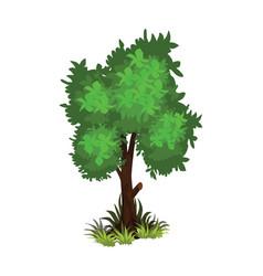 Isometric cartoon bushy green tree - tileset map vector
