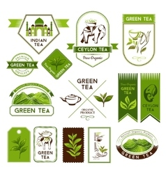 Green and ceylon tea labels vector