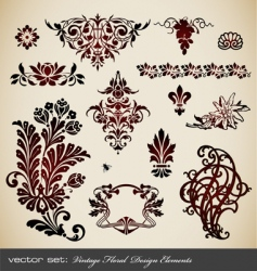 set vintage floral elements vector image