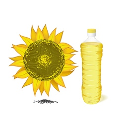 sunflower bottle and oil vector image