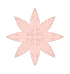 Beutiful flower isolated icon design vector