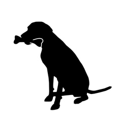 Dog with bone vector image vector image