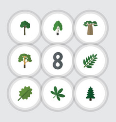 Flat icon ecology set of alder park wood and vector