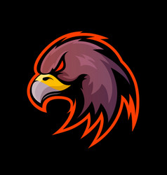 Furious eagle sport logo concept isolated vector