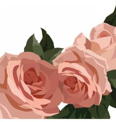 Vintage Watercolor Roses Flowers vector image