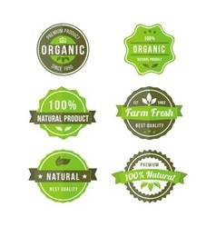original nature badges vector image