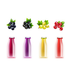 berry juice realistic set vector image