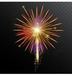 Colorful fireworks template vector