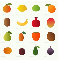 Color fruits vector