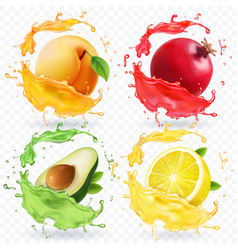Apricot lemon pomegranate avocado juice splash vector