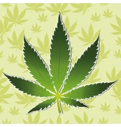 Cannabis leaf icon isolated vector
