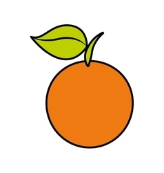 Orange fresh fruit icon vector