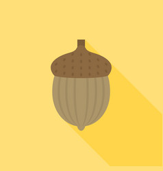 acorn with long shadow vector image