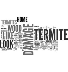 what does termite damage look like text word vector image vector image