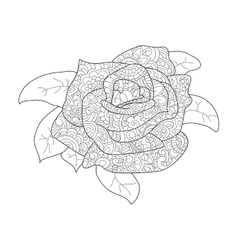 Rose flower coloring for adults vector