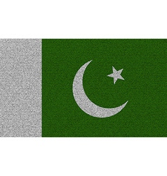 Flags pakistan on denim texture vector
