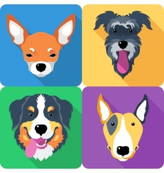 Dog icon flat design vector