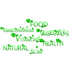 Food vegetables vegetarianism vitamins health vector