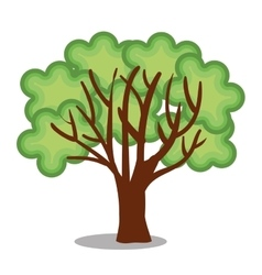 tree plant ecology icon vector image