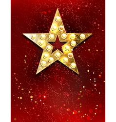 Star with Lights vector image