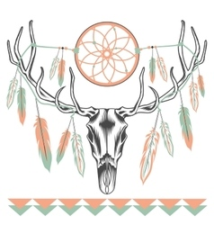 Ethnic deer skull Dreamcatcher feathers vector image