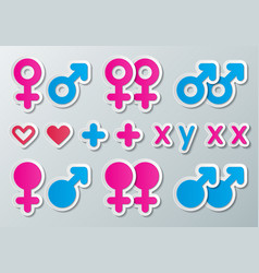 sex signs vector image