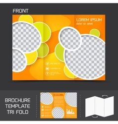 Brochure template tri fold vector image