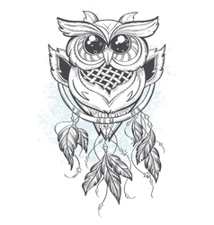 Dreamcatcher with owl feathers vector image vector image