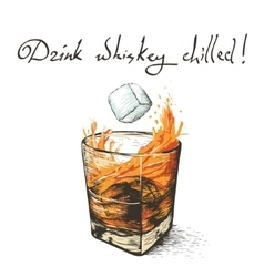 ice falls in whiskey vector image