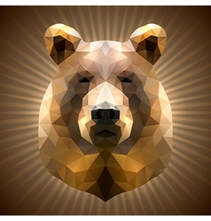 Polygonal bear vector
