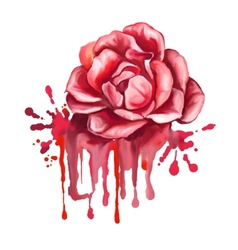 Rose hand drawn painted vector