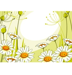 Postcard with daisies vector
