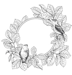 doodle frame bird vector image