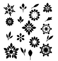 Flower and leaves silhouettes set vector image