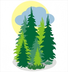 forrest wood vector image