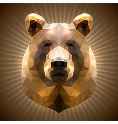 Polygonal bear vector
