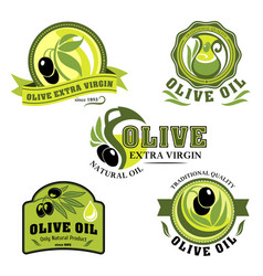 olive oil icons for product labels vector image