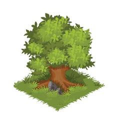 Isometric cartoon gigantic green oak tree - vector