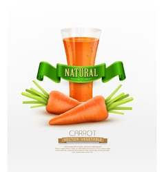 Glass of carrot juice and two carrots isolated on vector
